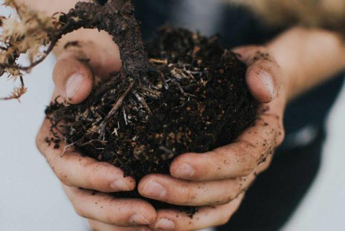 Beneficios y métodos del compostaje