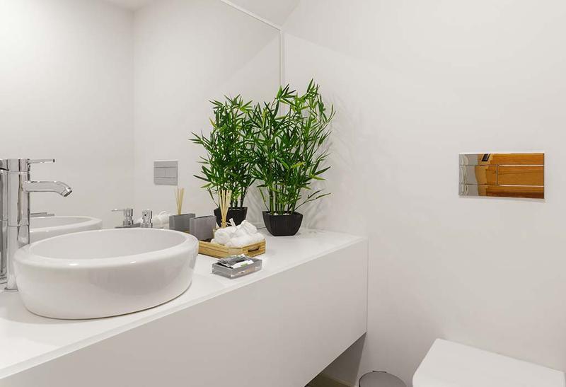 Rutina Verde: Decora tu cuarto de baño con plantas