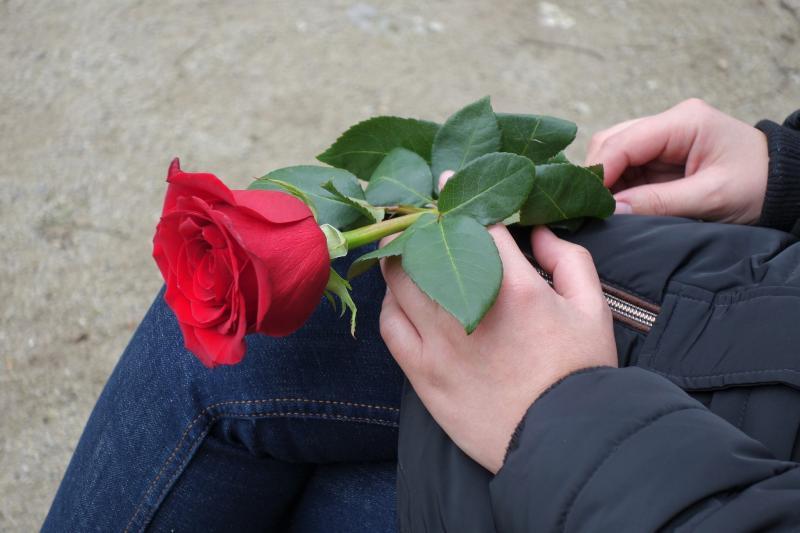 Sant Jordi: Día Internacional del Libro y de la Rosa