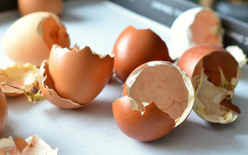 Limpiar macetas con cáscaras de huevo